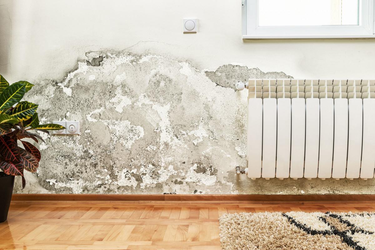 Come Rivestire Un Muro Interno cappotto termico per umidità in casa condensa muffe